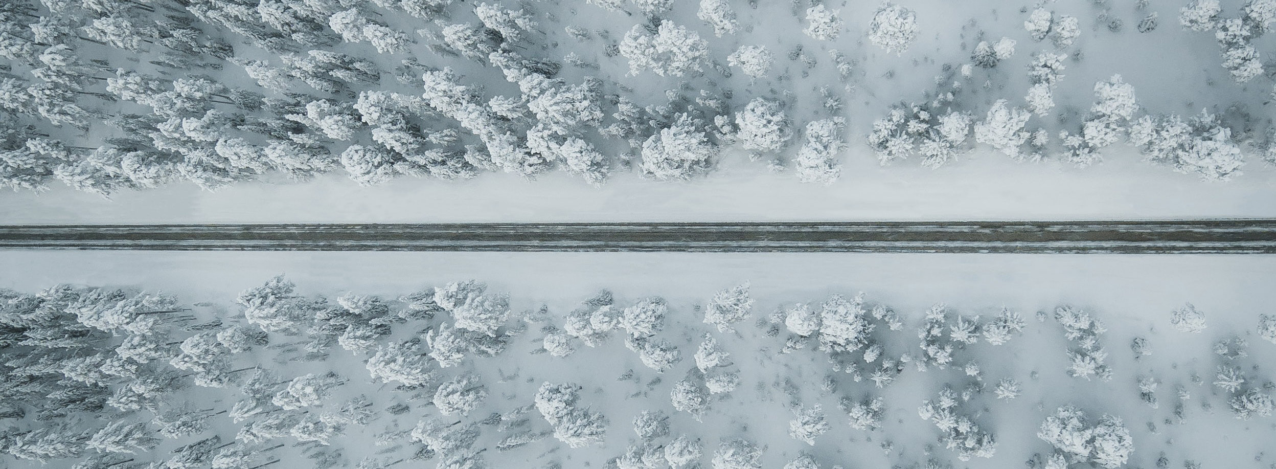 A winter landscape shot from above with trees and a road in the middle