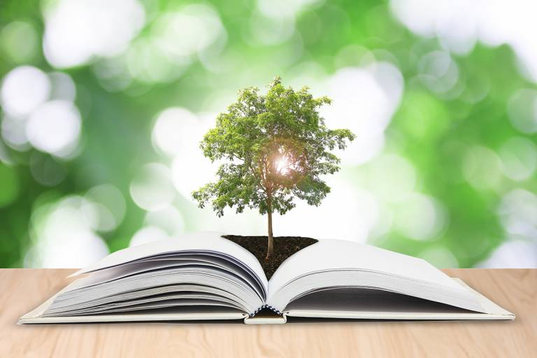 Avoin kirja, jonka keskeltä avautuu puu.