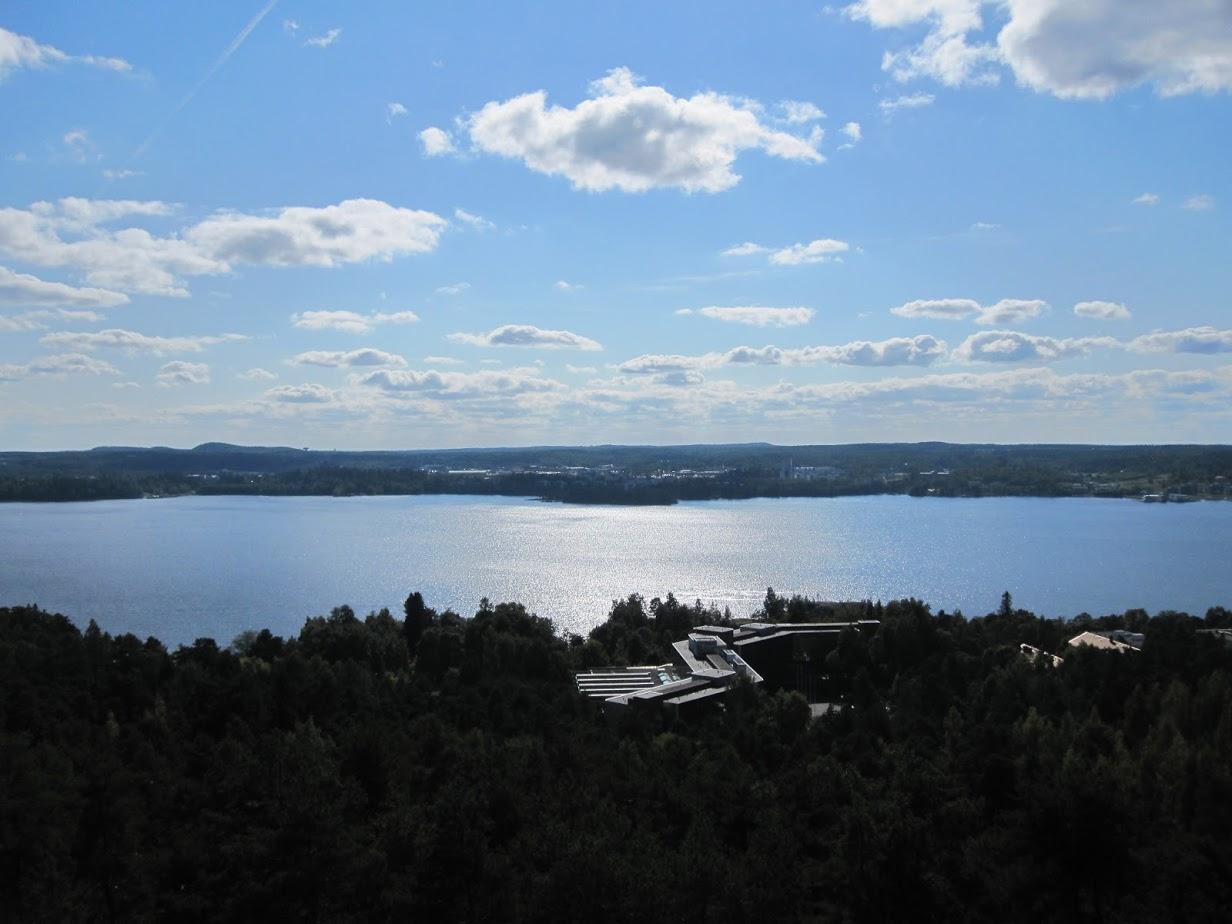 Järvinäkymä ja metsää ylhäältä kuvattuna.