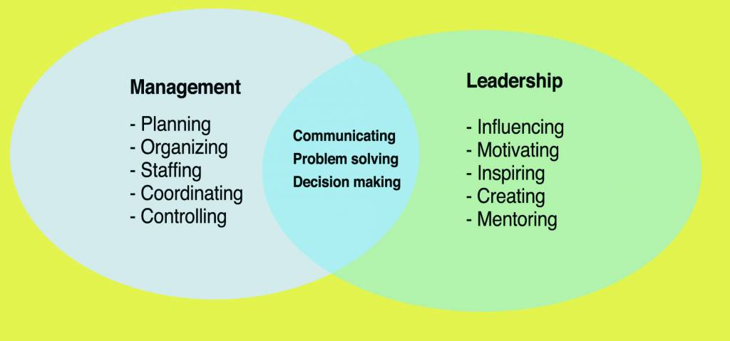 Management / Leadership