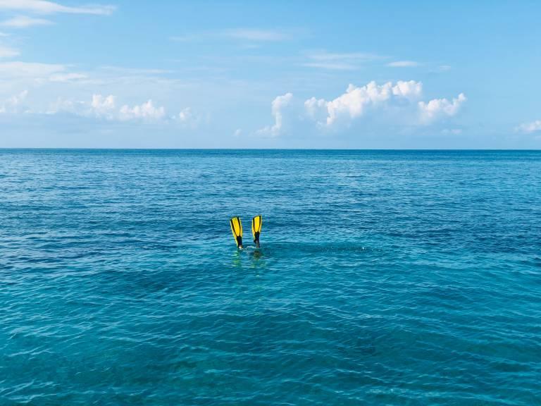 Kuva, jossa on meri ja pinnalla näkyy sulkeltavan ihmisen räpylät.