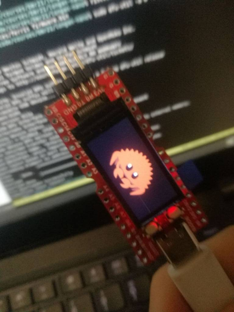 An image showing a Longan Nano with an LCD displaying Ferris the Crab